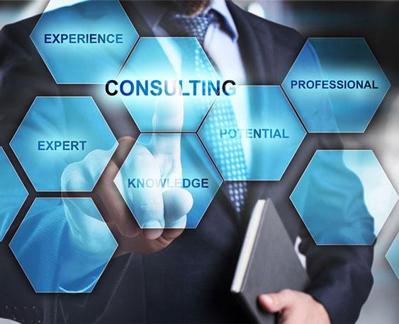 Expert Consultation
